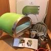 ポータブル石窯 ROCCBOX(ロックボックス) 購入費用もずいぶん抑えることが出来、大満足です!